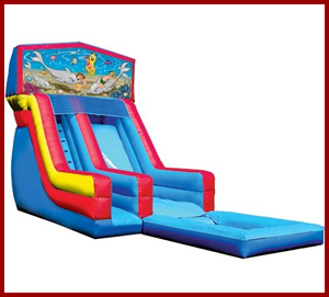 Module Water Slide