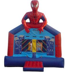 Spiderman 13X13 #B20