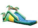 Tropical Slide #S14